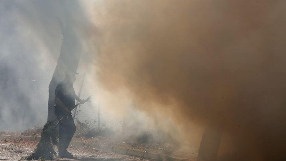 Εύβοια: Ανεξέλεγκτη η φωτιά στα περισσότερα μέτωπα-Οι φλόγες μπήκαν στα Βασιλικά