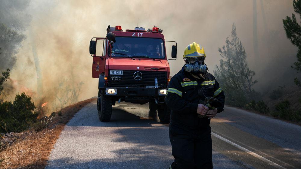 Πύργος: Αντιμετωπίστηκε άμεσα η φωτιά στη Νέα Μανωλάδα