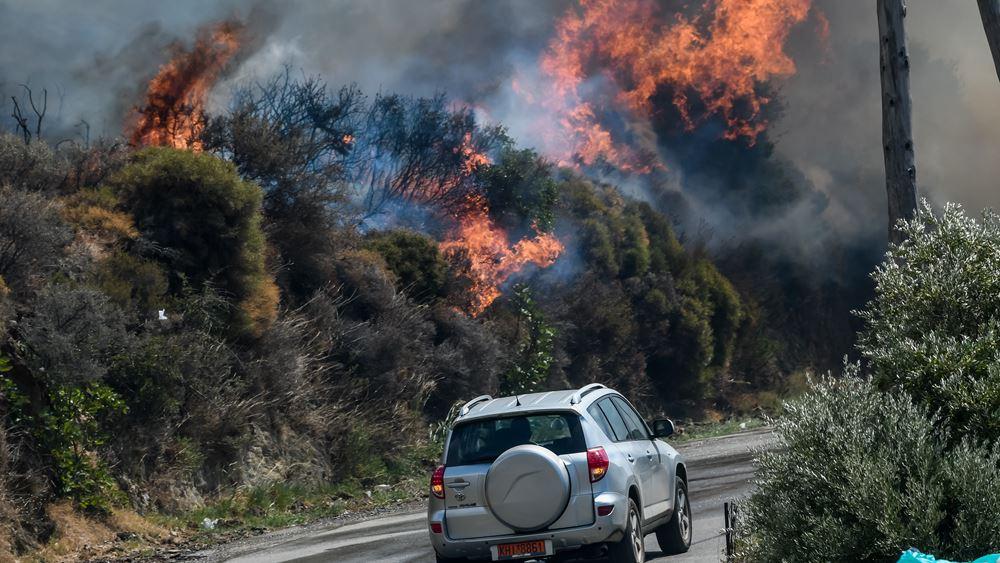Εύβοια: Οριοθετήθηκαν οι αναζωπυρώσεις σε Κοκκίνη, Φηγιά - Σε ύφεση η εστία στο Μαρμάρι