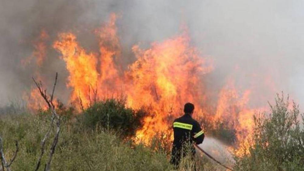 Μυτιλήνη: Υπό πλήρη έλεγχο η φωτιά που ξέσπασε χθες σε αγροτική περιοχή στη Μόρια