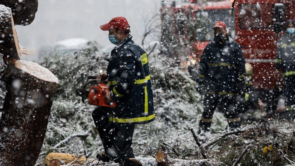 Ντόμινο προβλημάτων στην ηλεκτροδότηση, πάνω από 600 οι πτώσεις δέντρων