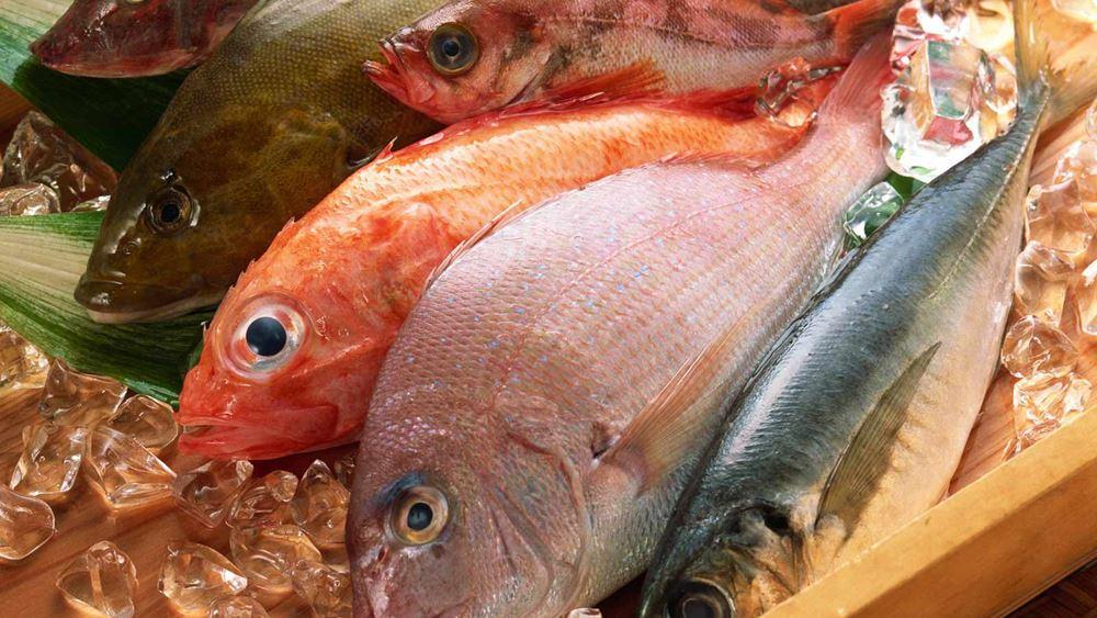 Ανάκληση κατεψυγμένων ψαριών από τον ΕΦΕΤ