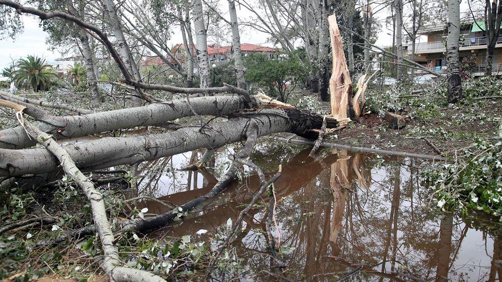 Χαλκιδική: Ολοκληρώθηκε η πρώτη φάση καταγραφής των ζημιών που προκάλεσε η φονική καταιγίδα