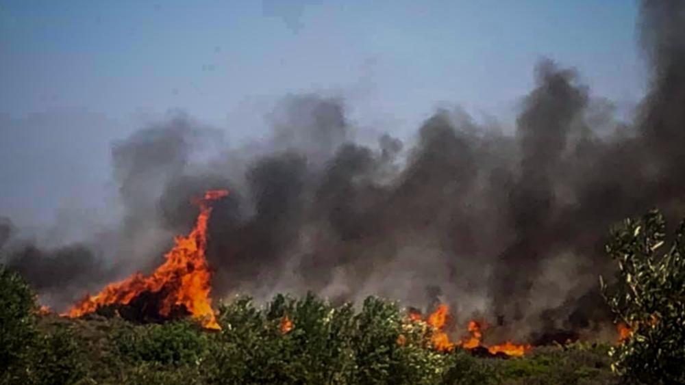 Ελαφόνησος: Κάηκε το 25% του νησιού - Φόβοι για αναζωπύρωση τη νύχτα