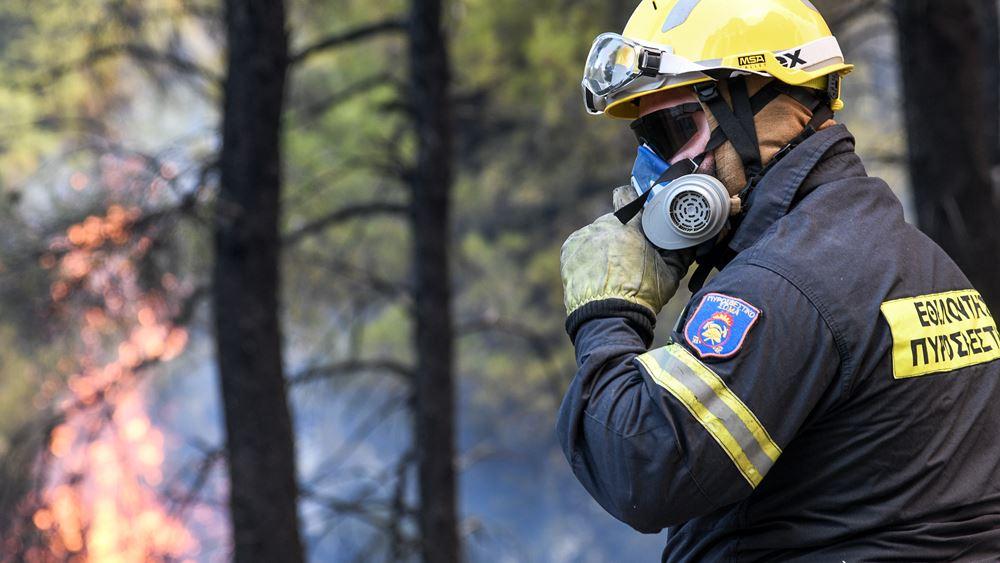 Μαίνεται η φωτιά στη Θήβα - Το ένα της μέτωπο κινείται προς τον Κορινθιακό