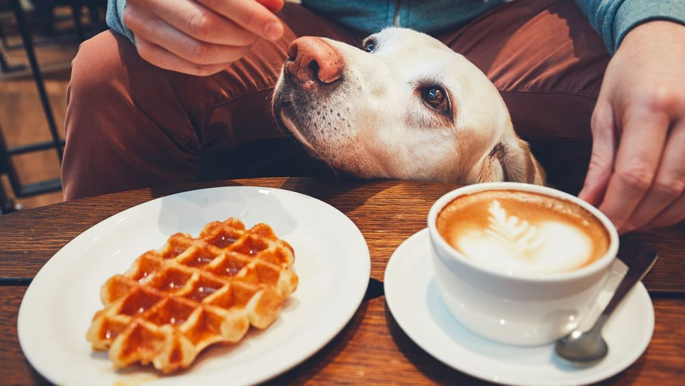 7 tips για να δείτε το πρωινό σας με άλλο μάτι