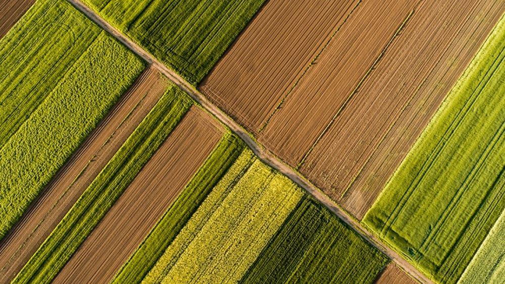 Τράπεζα Πειραιώς: Αύξηση 2,26% του δείκτη αγροτικών προϊόντων
