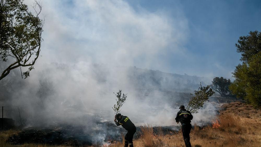 Πυρκαγιές: Δύσκολη νύχτα για Βίλια και Κερατέα