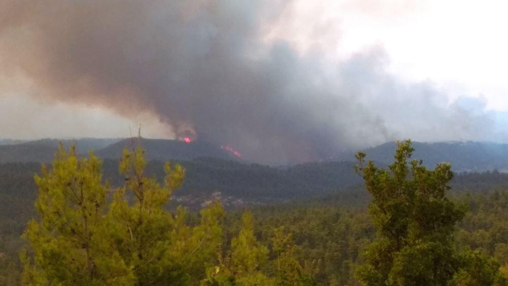Απομακρύνθηκαν 350 πολίτες από το Πευκί Ευβοίας με φέρυ μποτ λόγω της πυρκαγιάς