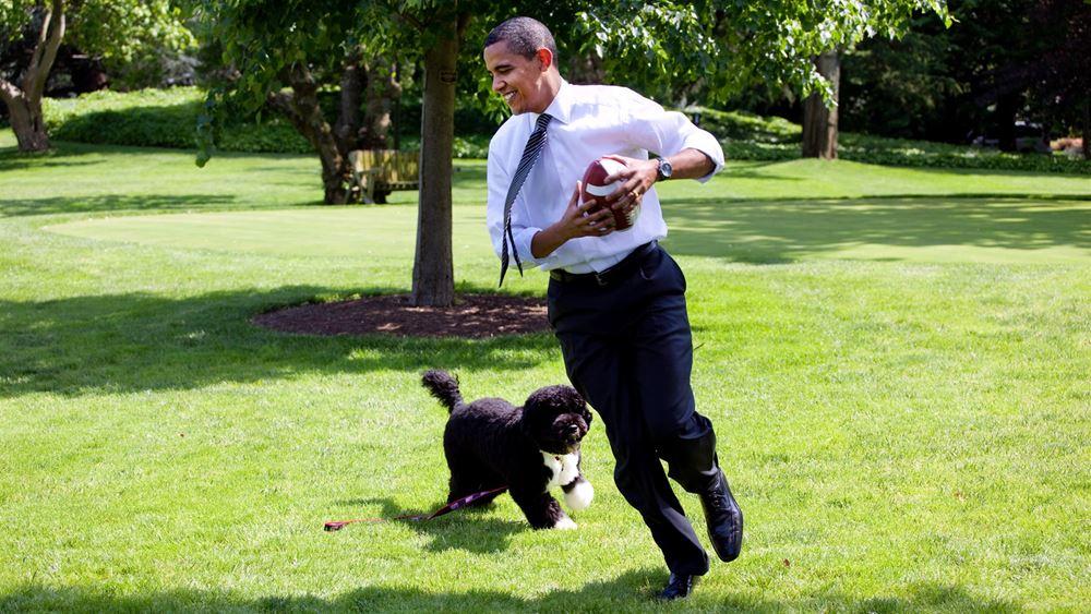 ΗΠΑ: Πέθανε ο Μπο, ο σκύλος του Μπαράκ Ομπάμα
