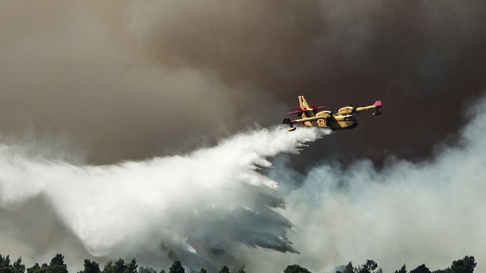 Κεφαλονιά: Δασική πυρκαγιά στην περιοχή Καρδακάτα