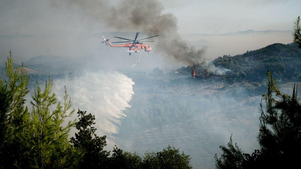 Δύο πύρινα μέτωπα στην Ηλεία - Η πυροσβεστική έσβησε τρίτη φωτιά στο Λατζόι