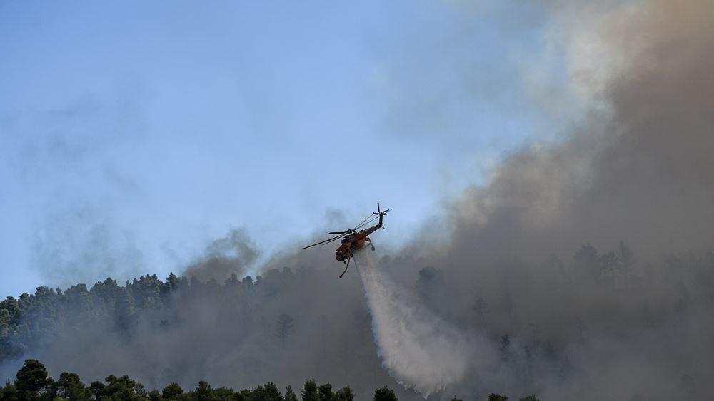 Σε ύφεση η πυρκαγιά στη Νέα Μάκρη - καταγγελίες για εμπρησμό