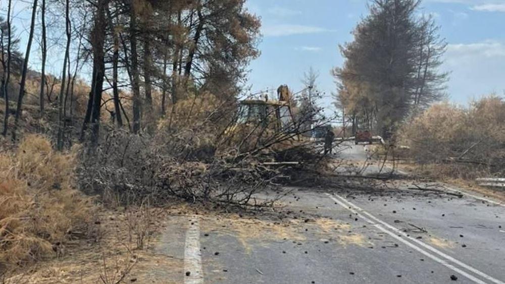 Σε εξέλιξη οι καθαρισμοί δρόμων και τα έργα υλοτομίας στα καμένα της Εύβοιας