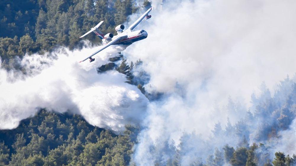 Βίλια: Ανεξέλεγκτα τα πύρινα μέτωπα στο όρος Πατέρα – 80.000 στρέμματα στάχτη μέχρι τώρα