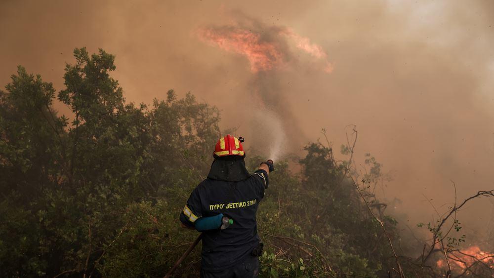 Θεσσαλονίκη: Υπό μερικό έλεγχο τέθηκε η φωτιά σε δασική έκταση στον Παρθενώνα Χαλκιδικής