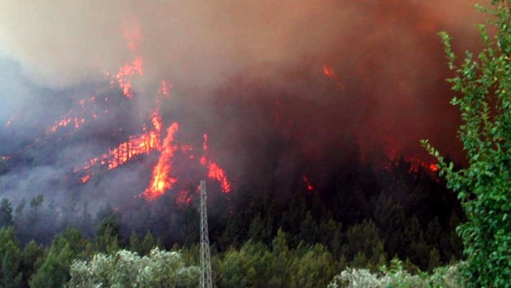 """Σαρδηνία: 200.000 στρέμματα δάσους """"στάχτη"""", 400 άνθρωποι απομακρύνθηκαν από τα σπίτια τους - Δύο αεροσκάφη στέλνει η Ελλάδα"""