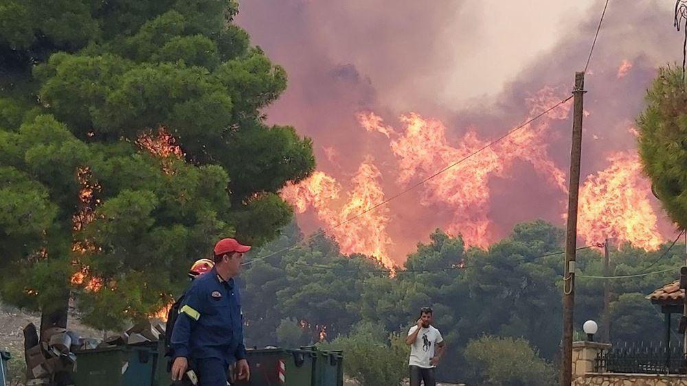 Χαρδαλιάς: Μια πρώτη εκτίμηση είναι ότι χάθηκαν 10.000 στρέμματα από τη φωτιά στη Ζάκυνθο