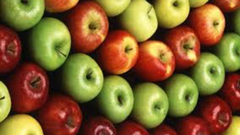 ΕΕ: Αρχίζει εκ νέου το ευρωπαϊκό πρόγραμμα διανομής φρούτων, λαχανικών και γάλακτος στα σχολεία