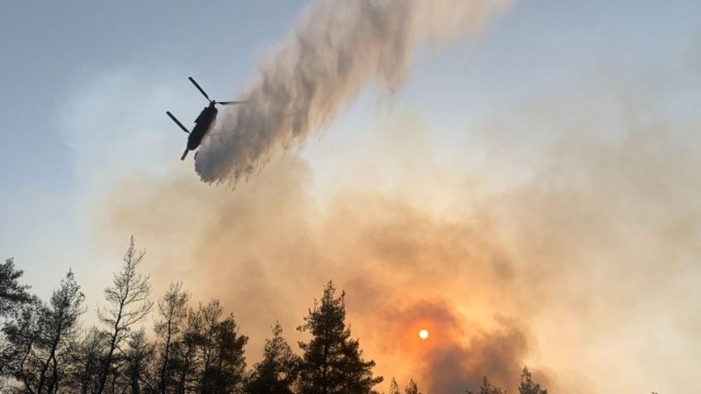 Αχαΐα: Σε εξέλιξη πυρκαγιά σε δασική έκταση στην περιοχή Άνω Ψωφίδα, στα Καλάβρυτα