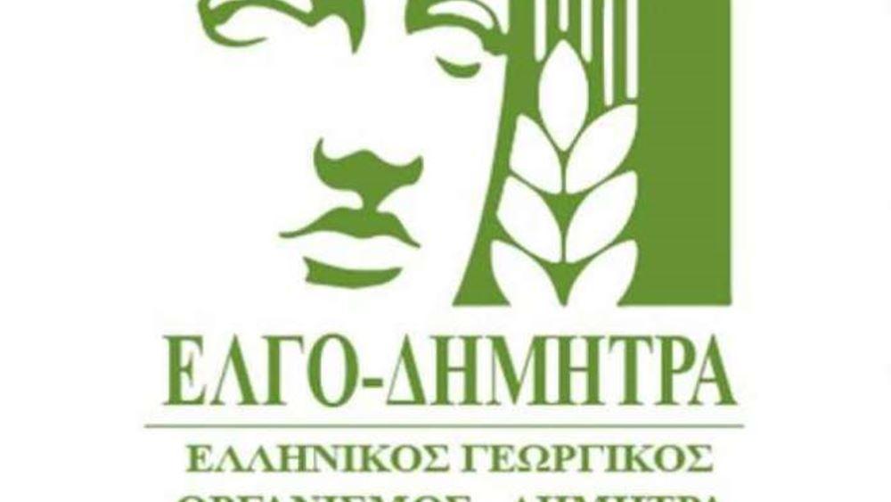 ΕΛΓΟ-ΔΗΜΗΤΡΑ: Τον Φεβρουάριο ο νέος νόμος για τις ελληνοποιήσεις
