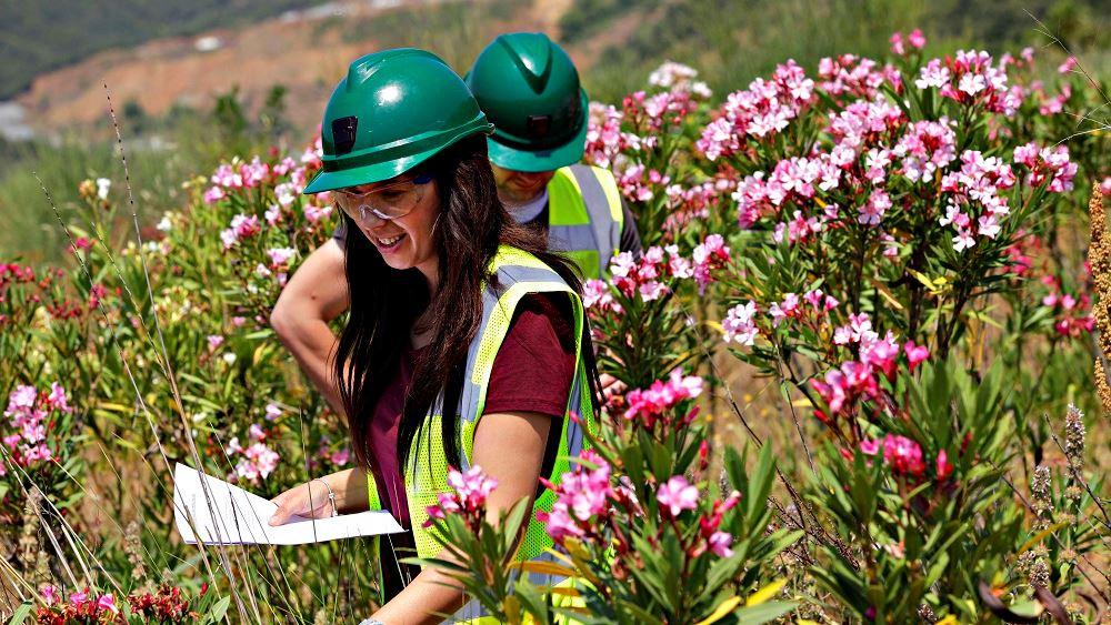 Παράλληλη αποκατάσταση: Μία καινοτόμος περιβαλλοντική πρακτική εφαρμόζεται στη Χαλκιδική
