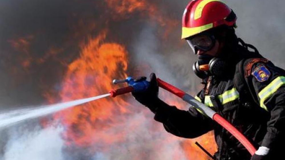 Πυροσβεστική: Καλύτερη η εικόνα της φωτιάς στην Ελαφόνησο