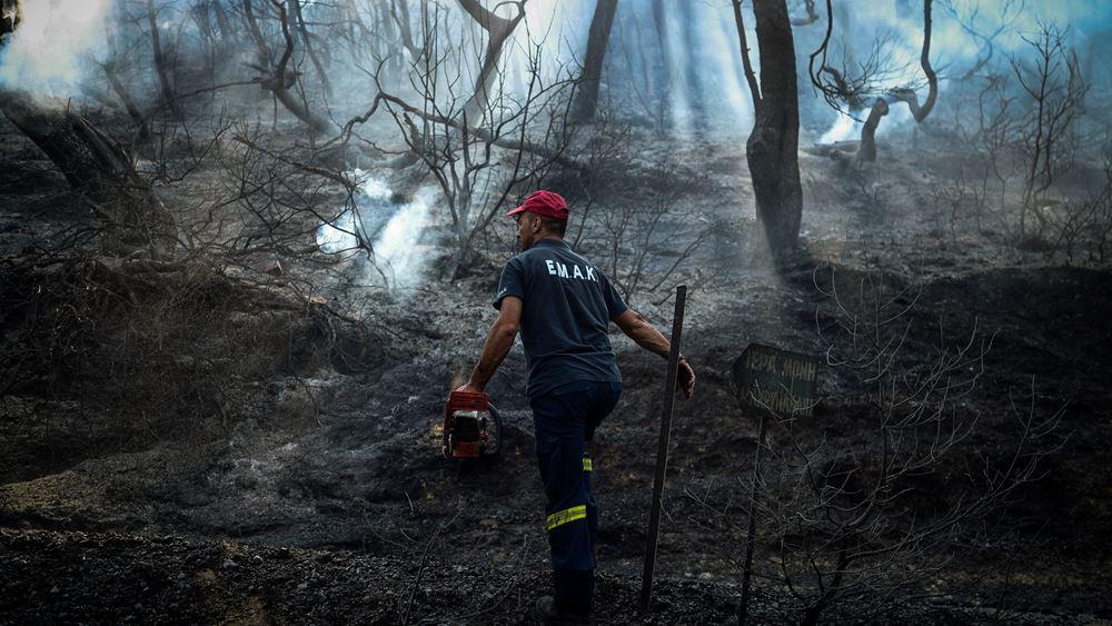 Πύργος: Υπό μερικό έλεγχο η φωτιά στην Κυανή Ακτή