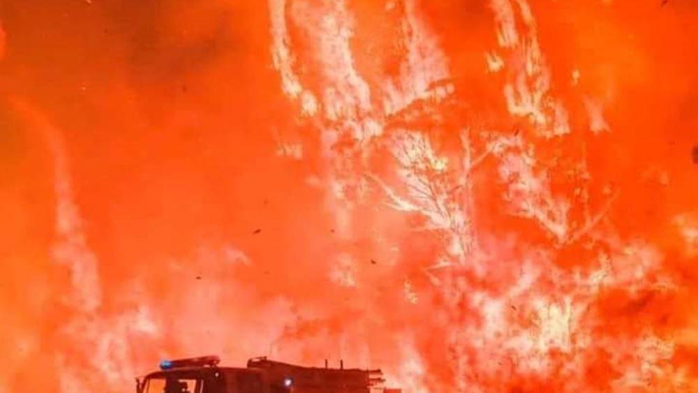 Αυστραλία: Τους 24 έφτασαν οι νεκροί από τις δασικές πυρκαγιές