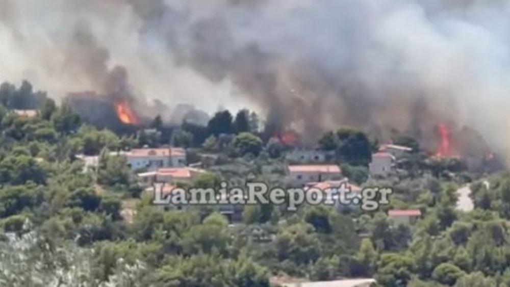 Πυρκαγιά στον Θεολόγο: Υπό μερικό έλεγχο το μέτωπο λίγο πριν φτάσει στο μοναστήρι στη Μαλεσίνα
