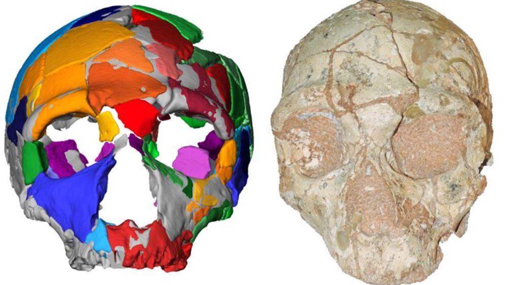 Το αρχαιότερο δείγμα homo sapiens είναι 210.000 ετών και βρέθηκε στην Ελλάδα