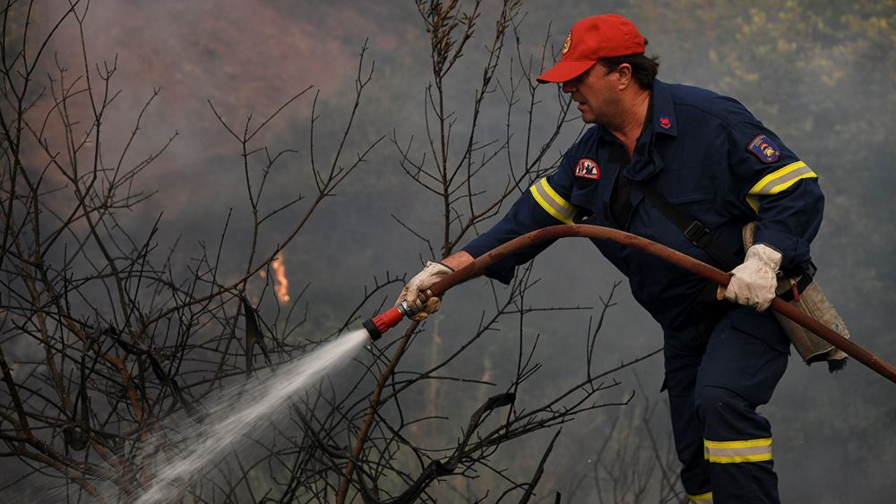 Φωτιά στην περιοχή Παλαιοβαρβάσαινα Ηλείας