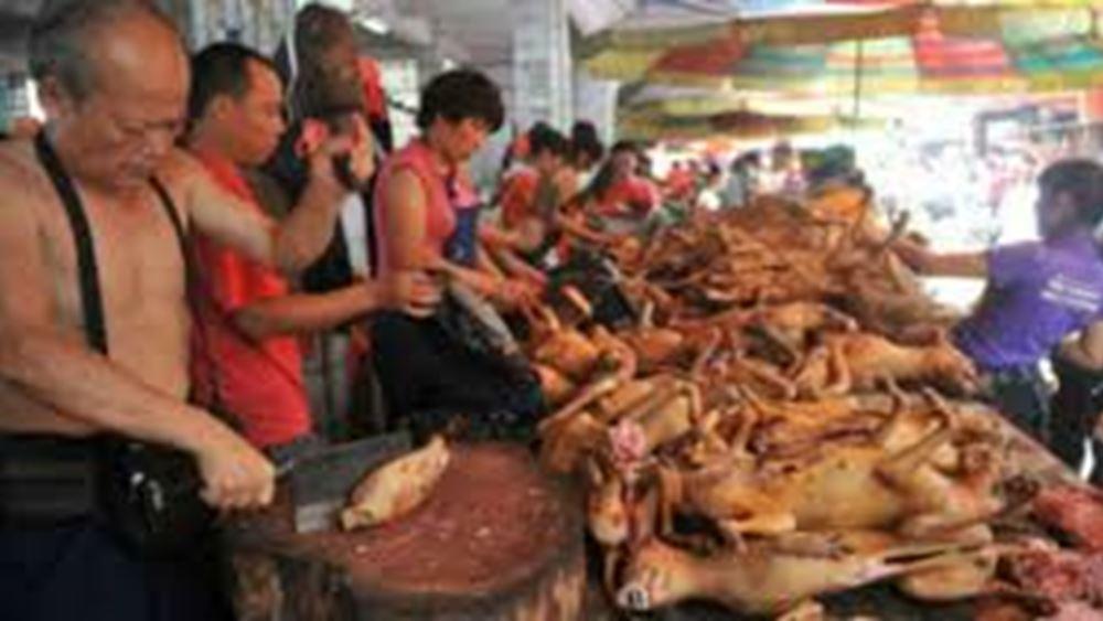 Κίνα: Ξεκίνησε στη χώρα το ετήσιο φεστιβάλ κατανάλωσης κρέατος σκύλου