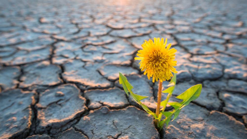 ΟΗΕ: Ίσως δεν επιτευχθούν οι στόχοι για το κλίμα παρά την προσωρινή παύση στις εκπομπές λόγω Covid-19