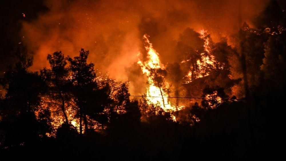 Χωρίς ενεργό μέτωπο η φωτιά στην Εύβοια -Ενισχύονται οι ενδείξεις εμπρησμού