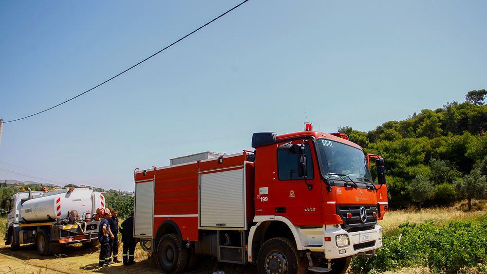 Πάτρα: Φωτιά σε δασική έκταση στην Κάτω Δροσιά του δήμου Ερυμάνθου