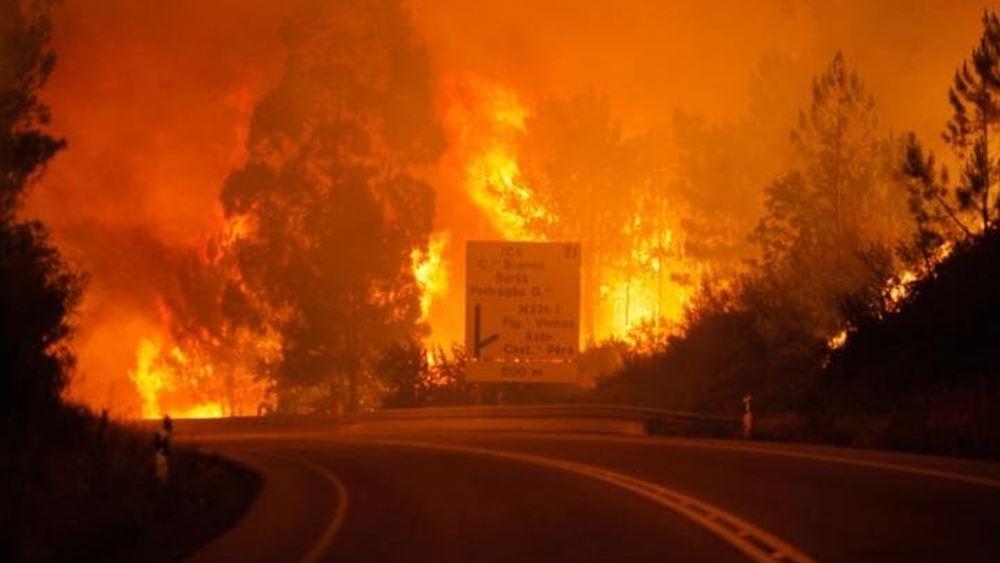 """Οι """"γιγαντιαίες πυρκαγιές"""" απειλούν την Ευρώπη, προειδοποιεί το WWF"""