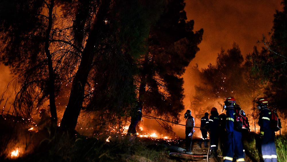 Φωτιά στα Στύρα: Μια σύλληψη για εμπρησμό