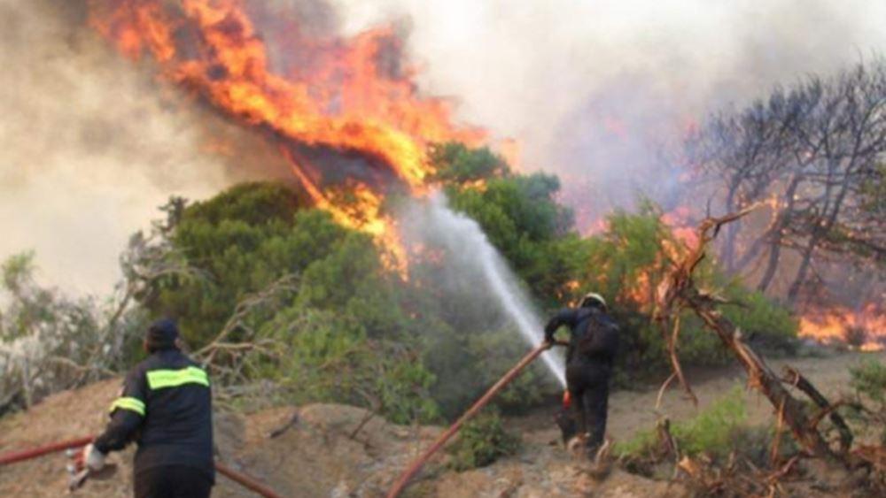 Ρέθυμνο: Πυρκαγιά σε δασική περιοχή στον Πάνορμο