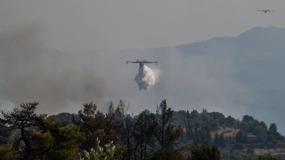 Αρκαδία: Οριοθετήθηκε η πυρκαγιά στα Καλύβια Μεγαλόπολης