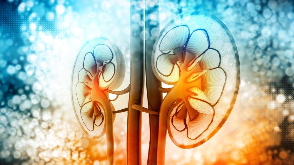 Έγκριση νέας θεραπείας για τον προχωρημένο καρκίνο του νεφρού