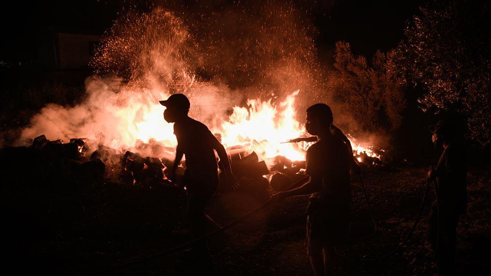 Καλύτερη η κατάσταση με τις πυρκαγιές στο Γύθειο: Μέτωπο στην ορεινή περιοχή, Κρυονέρι