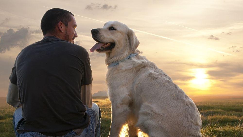 Ένας πολύ σημαντικός λόγος υγείας για να αποκτήσετε σκύλο