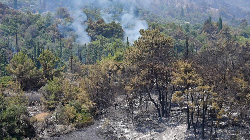 Βόλος: Πυρκαγιά στα ορεινά του Αλμυρού- Δεν κινδυνεύουν κατοικημένες περιοχές