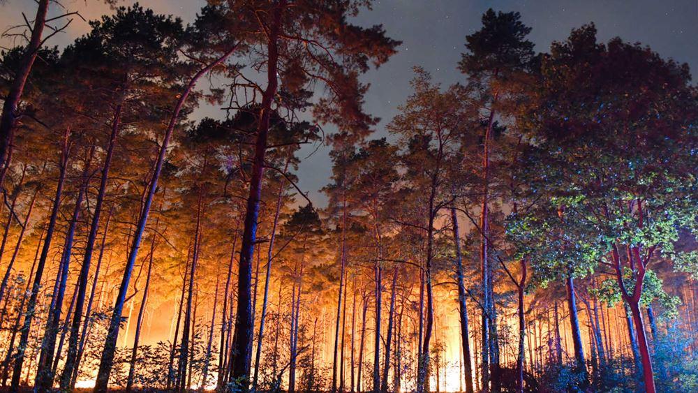 Γερμανία: Η μεγάλη δασική πυρκαγιά στα περίχωρα του Πότσνταμ εξακολουθεί να απειλεί χωριά