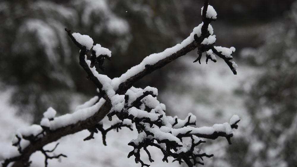 """Από τη Δευτέρα η δεύτερη φάση της """"Μήδειας"""" με πυκνές χιονοπτώσεις και στην Αθήνα"""