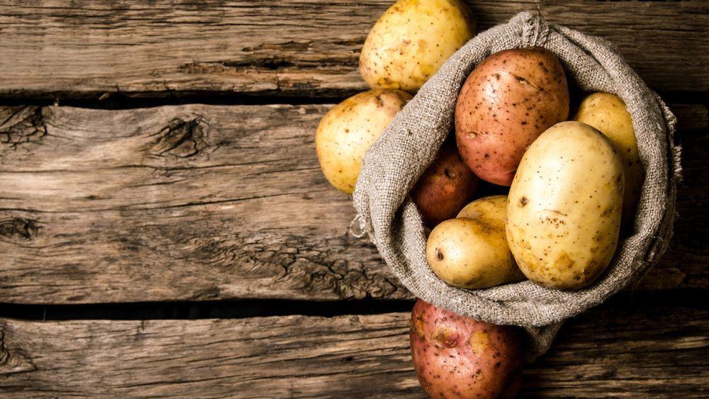 Ο κορονοϊός, συνταγή καταστροφής για τις γερμανικές πατάτες