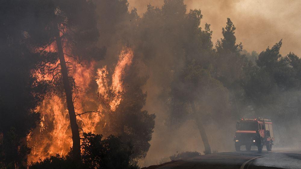 Αντιπυρικές ζώνες για να περιοριστούν τα μέτωπα της πυρκαγιάς στην Εύβοια