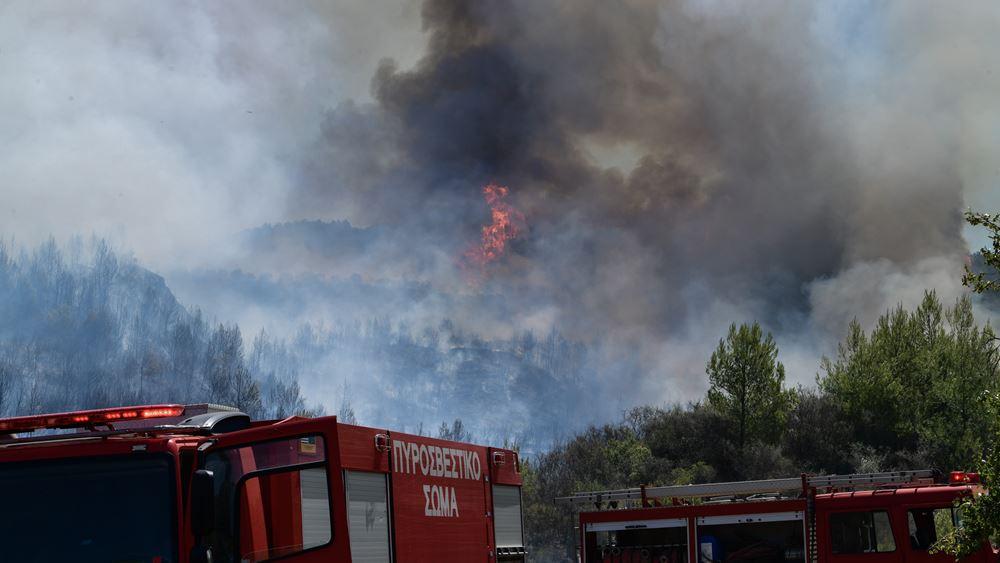 Ρέθυμνο: Πυρκαγιά σε δασική έκταση - Επιχειρούν εξήντα πυροσβέστες