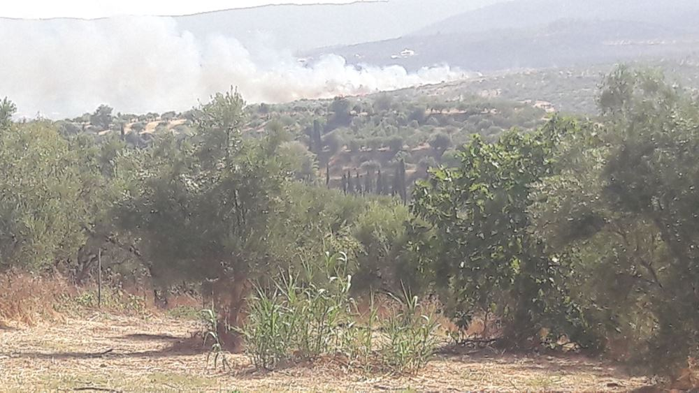 Ανεξέλεγκτη η φωτιά στο Διαβολίτσι Μεσσηνίας - Εκκενώθηκαν οικισμοί